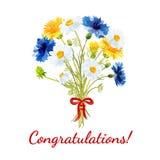 Wiosna bukiet pole kwitnie jako prezent Zdjęcie Royalty Free