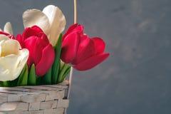 Wiosna bukiet tulipany w koszu na rocznika tle Sztandaru szablon z copyspace dla kobiety lub Macierzystego dnia, wielkanoc, wiosn obraz stock