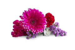 Wiosna bukiet z gerbera i purpurami kwitnie odosobnionego na bielu Obraz Royalty Free