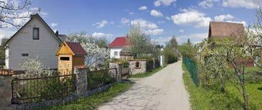 Wiosna czas kwitnie owocowi drzewa Obraz Stock