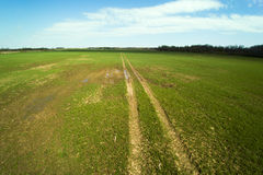 Wiosna czas w latvian wsi Fotografia Royalty Free
