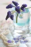 wiosna czułość Obraz Royalty Free