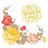 Wiosna dla ciebie. Kaligraficzny tekst. royalty ilustracja