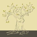 wiosna drzewo royalty ilustracja