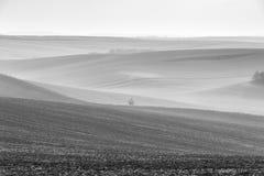 Wiosna fartuch Moravia pola w chmurnym dniu zdjęcia stock