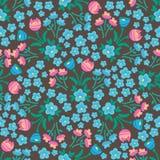 Wiosna flowers-23 zdjęcia royalty free