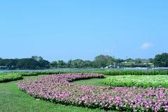 Wiosna Formalny ogród kwiatu piękny kolorowy ogród fotografia stock