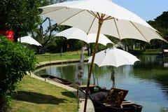 Wiosna Formalny ogród kwiatu piękny kolorowy ogród zdjęcie stock