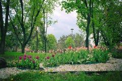 Wiosna Formalny ogr?d kwiatu pi?kny kolorowy ogr?d Tulipanowy projekt w ogr?dzie zdjęcia stock