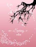 Wiosna jest w lotniczym natury kartka z pozdrowieniami z literowanie elementem wektor Obrazy Royalty Free