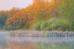 wiosna jeziorny whitford Zdjęcia Royalty Free