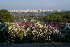 Wiosna Kij?w, Ukraina obrazy royalty free