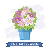Wiosna kolorowi kwiaty w garnkach Wektorowych Zdjęcia Stock