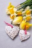 Wiosna koloru żółtego kwiaty i dwa dekoracyjnego serca na popielatej teksturze Zdjęcia Stock