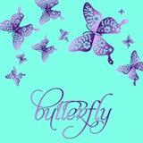 Wiosna koloru motyli skład Zdjęcie Royalty Free
