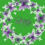 Wiosna koloru motyli skład Fotografia Royalty Free