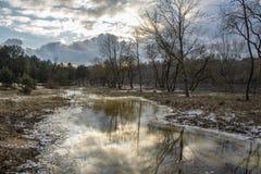 Wiosna komes brzeg rzeki Zim końcówek krajobraz z drzewami zbliża rzekę Fotografia Stock