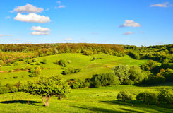Wiosna krajobraz Obrazy Stock