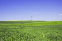 Wiosna krajobraz Zdjęcia Stock