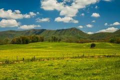 Wiosna krajobraz, Angielski teren górski zdjęcia stock