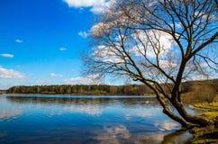 Wiosna krajobraz, Kwiecień zdjęcia royalty free