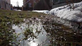 Wiosna krajobraz ostatni śnieg w ustronnych miejscach Jaskrawy słońce topi śnieg Deciduous drzewa bez liści melt obraz stock