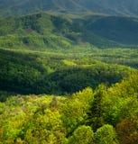 Wiosna krajobraz, pogórza Parkway, TN Obraz Stock