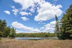 Wiosna krajobraz przy Jack jeziorem w Algonquin parku zdjęcie stock