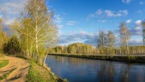 Wiosna krajobraz przy Ural rzeką z brzozą, Rosja Obrazy Royalty Free