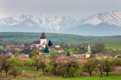 Wiosna krajobraz w otręby zdjęcie royalty free