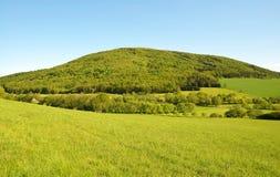 Wiosna krajobraz w słonecznym dniu Zdjęcia Royalty Free