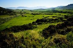 Wiosna krajobraz w Sardinia, Włochy obraz stock