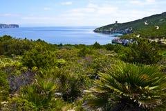 Wiosna krajobraz w Sardinia, Włochy zdjęcie royalty free