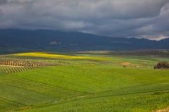 Wiosna krajobraz wokoło Fes, Maroko zdjęcie royalty free