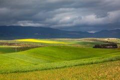 Wiosna krajobraz wokoło Fes, Maroko obrazy stock