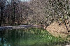 Wiosna krajobraz z jeziorem w lesie obrazy stock