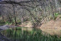 Wiosna krajobraz z jeziorem w lesie obrazy royalty free