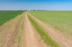Wiosna krajobraz z ziemską drogą między upraw polami w środkowym Ukraina Obraz Royalty Free