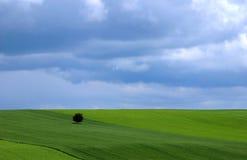 wiosna krajobrazowa Fotografia Royalty Free