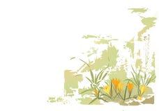 wiosna kwiat ilustracja wektor