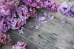 wiosna kwiat Bzów kwiatów rama na wieśniaku Textured Szarego drewnianego tło Odgórny widok, mieszkanie nieatutowy Zdjęcie Stock