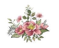 wiosna kwiat Etykietka z kwiatami i liśćmi również zwrócić corel ilustracji wektora ilustracja wektor