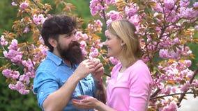 wiosna kwiat Para w mi?o?ci obejmowa? Pragnienie i zmys?owe foreplay gry Romantyczna para szcz??liwy kocha? pary zbiory