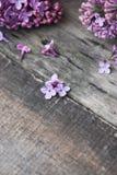 wiosna kwiat Purpurowa bzów kwiatów rama na wieśniaku Textured Szarego drewnianego tło Odgórny widok, mieszkanie nieatutowy Obrazy Royalty Free