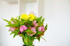 Wiosna kwiat w mieszkaniu Piękni menchia kwiaty Wnętrze dom Zdjęcia Royalty Free