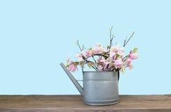 Wiosna kwiatu bukiet w cynkowej podlewanie puszce Zdjęcie Stock