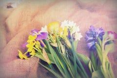 Wiosna kwiatu przygotowania przeciw nieociosanemu tłu zdjęcie stock
