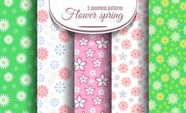 Wiosna kwiatu wzoru bezszwowy set ilustracji