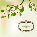 Wiosna kwiaty kwitnący na drzewie royalty ilustracja