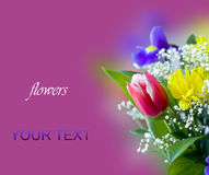 Wiosna kwiaty piękny bukiet obrazy royalty free